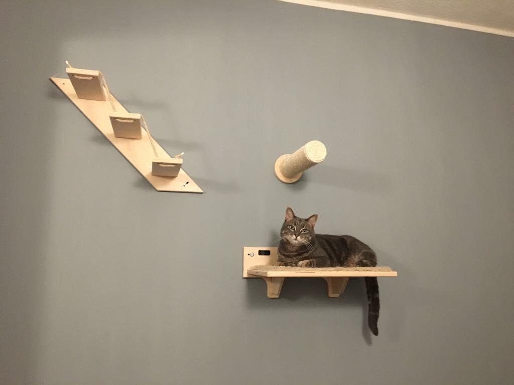 mensole per gatti